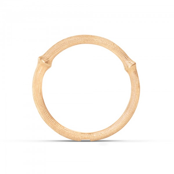 Ring Nature 1