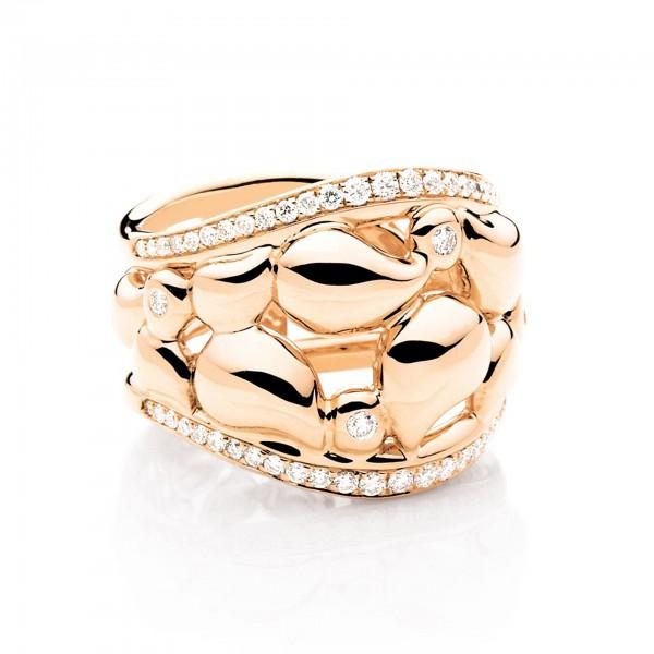 Ring Signature Lace