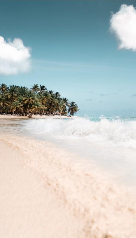 media/image/Strand-Sonnenbrille-Hunke-Palmen.jpg