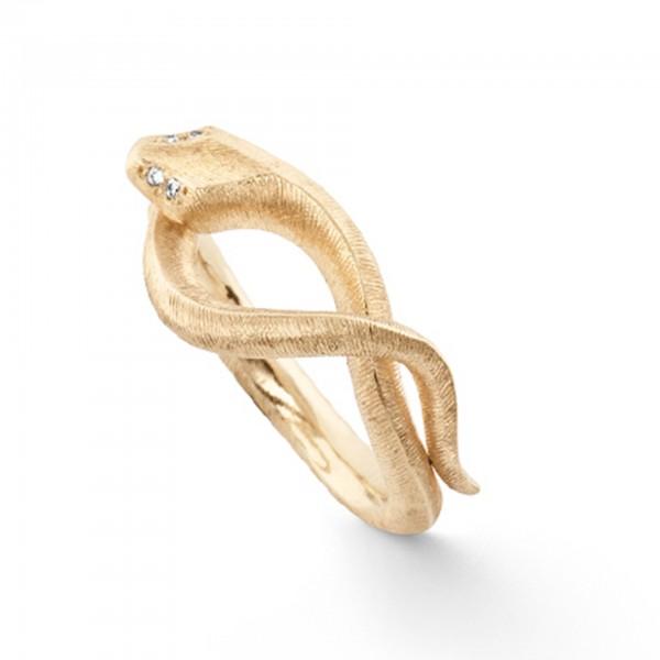 Ring Snakes