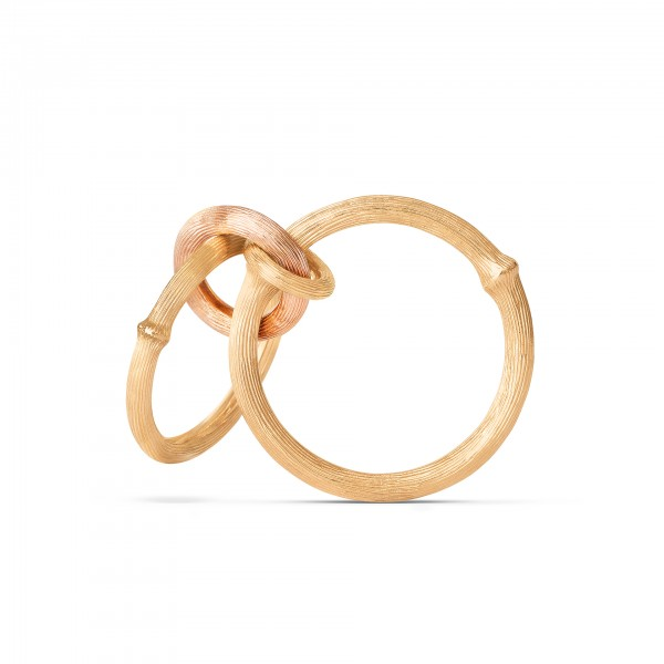 Ring Nature